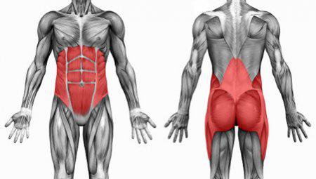 Core stability spieren